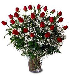 İstanbul Ümraniye çiçek siparişi sitesi  Cam yada mika vazo içerisinde 15 adet kirmizi güller,cipsofi