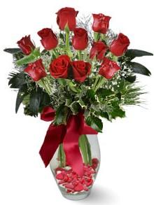 9 adet gül  İstanbul Ümraniye internetten çiçek satışı  kirmizi gül