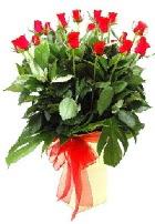Vazoda 15 adet kırmızı gül  İstanbul Ümraniye online çiçek gönderme sipariş