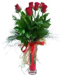 vazo içerisinde 5 kırmızı gül  İstanbul Ümraniye güvenli kaliteli hızlı çiçek