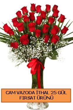 Cam vazoda ithal 1. kalite 25 gül  İstanbul Ümraniye internetten çiçek satışı