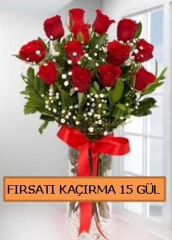 15 İthal kırmızı gül büyük başlı orjinal  İstanbul Ümraniye çiçek siparişi sitesi