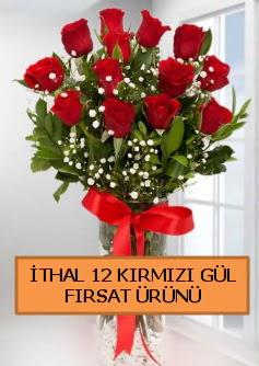 İthal kırmızı 12 adet kaliteli gül  İstanbul Ümraniye ucuz çiçek gönder
