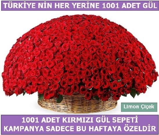 1001 Adet kırmızı gül Bu haftaya özel  İstanbul Ümraniye İnternetten çiçek siparişi