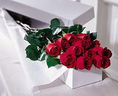İstanbul Ümraniye çiçek satışı  özel kutuda 12 adet gül