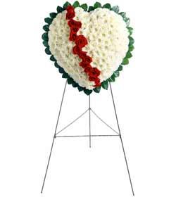 İstanbul Ümraniye internetten çiçek siparişi  kalbimin tek sahibisin benim