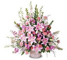 İstanbul Ümraniye çiçek siparişi sitesi  Tanzim mevsim çiçeklerinden çiçek modeli
