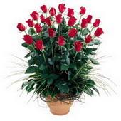 İstanbul Ümraniye uluslararası çiçek gönderme  10 adet kirmizi gül cam yada mika vazo