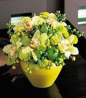 İstanbul Ümraniye internetten çiçek satışı  5 adet cam yada mika vazoda orkideler