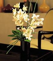 İstanbul Ümraniye çiçekçiler  cam yada mika vazo içerisinde dal orkide