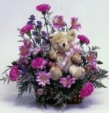 İstanbul Ümraniye çiçek online çiçek siparişi  oyuncak ve mevsim çiçekleri