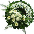 cenaze çiçekleri son yolculuk  tabut üstü model