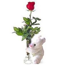 oyuncak ve gül tanzim   İstanbul Ümraniye yurtiçi ve yurtdışı çiçek siparişi