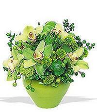 cam yada mika vazoda 5 adet orkide   İstanbul Ümraniye online çiçekçi , çiçek siparişi