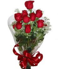 9 adet kaliteli kirmizi gül   İstanbul Ümraniye online çiçekçi , çiçek siparişi