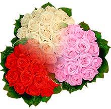 3 renkte gül seven sever   İstanbul Ümraniye çiçek , çiçekçi , çiçekçilik