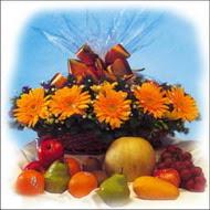 sepette gerbera ve meyvalar   İstanbul Ümraniye çiçekçi mağazası