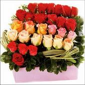 15 adet renkli gül ve cam   İstanbul Ümraniye çiçekçi mağazası
