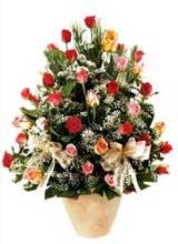 91 adet renkli gül aranjman   İstanbul Ümraniye çiçek gönderme sitemiz güvenlidir