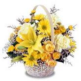 sadece sari çiçek sepeti   İstanbul Ümraniye çiçek gönderme sitemiz güvenlidir