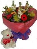 mevsim demeti oyuncak   İstanbul Ümraniye çiçek gönderme