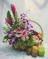 orkide kazablanka ve sepet  İstanbul Ümraniye çiçek yolla