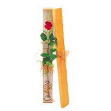 ince  kutuda  1  gül   İstanbul Ümraniye çiçek yolla