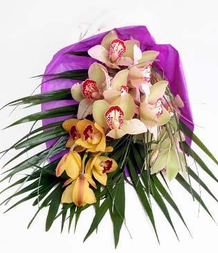 İstanbul Ümraniye cicekciler , cicek siparisi  1 adet dal orkide buket halinde sunulmakta
