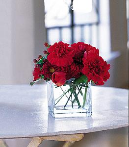 İstanbul Ümraniye ucuz çiçek gönder  kirmizinin sihri cam içinde görsel sade çiçekler
