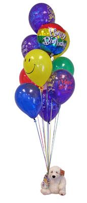 İstanbul Ümraniye çiçekçi telefonları  Sevdiklerinize 17 adet uçan balon demeti yollayin.