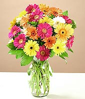İstanbul Ümraniye çiçek online çiçek siparişi  17 adet karisik gerbera