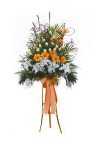 İstanbul Ümraniye çiçek mağazası , çiçekçi adresleri  Kazablanka, gerbera ve güllerle hazirlanmis ferfor