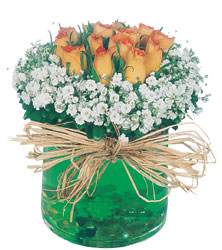 İstanbul Ümraniye internetten çiçek satışı  Cam yada mika içerisinde 9 adet  gül aranjmani