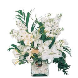 İstanbul Ümraniye internetten çiçek siparişi  sadece beyazlardan olusmus mevsim cam yada mika tanzim