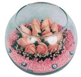 İstanbul Ümraniye internetten çiçek satışı  cam fanus içerisinde 10 adet gül
