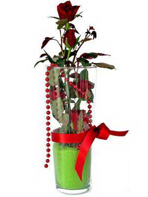 İstanbul Ümraniye online çiçek gönderme sipariş  Cam yada mika içerisinde 9 adet kirmizi gül - sevdiklerinize özel