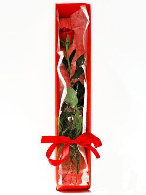 İstanbul Ümraniye yurtiçi ve yurtdışı çiçek siparişi  1 adet kutuda gül