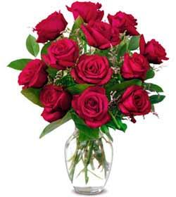 İstanbul Ümraniye online çiçek gönderme sipariş  1 düzine kirmizi gül sevenlere özel vazo gülleri