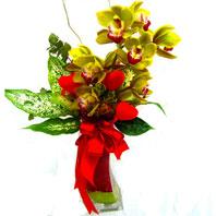 İstanbul Ümraniye uluslararası çiçek gönderme  1 adet dal orkide ve cam yada mika vazo tanzim