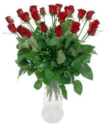 İstanbul Ümraniye çiçekçi telefonları  11 adet kimizi gülün ihtisami cam yada mika vazo modeli