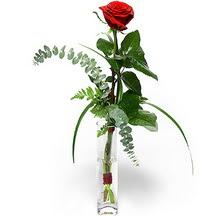 İstanbul Ümraniye 14 şubat sevgililer günü çiçek  Sana deger veriyorum bir adet gül cam yada mika vazoda
