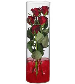 cam içerisinde 7 adet kirmizi gül  İstanbul Ümraniye çiçekçiler