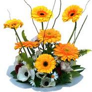 camda gerbera ve mis kokulu kir çiçekleri  İstanbul Ümraniye çiçekçi telefonları
