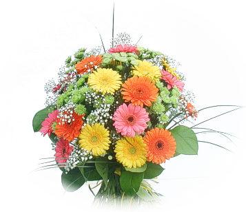 13 adet gerbera çiçegi buketi  İstanbul Ümraniye online çiçek gönderme sipariş