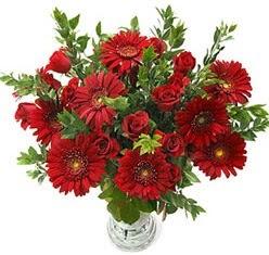 5 adet kirmizi gül 5 adet gerbera aranjmani  İstanbul Ümraniye hediye çiçek yolla