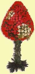 İstanbul Ümraniye çiçek gönderme  dügün açilis çiçekleri  İstanbul Ümraniye çiçek online çiçek siparişi