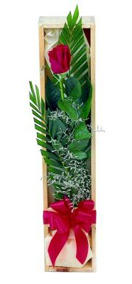 1 adet kutuda kirmizi gül  İstanbul Ümraniye çiçek gönderme sitemiz güvenlidir