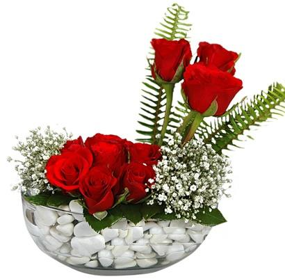 cam içerisinde 9 adet kirmizi gül  İstanbul Ümraniye çiçek siparişi vermek