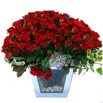 İstanbul Ümraniye çiçekçiler   101 adet kirmizi gül aranjmani