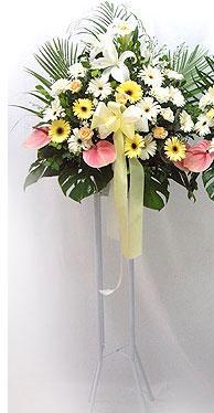 İstanbul Ümraniye online çiçek gönderme sipariş   perförje çiçegi dügün çiçekleri